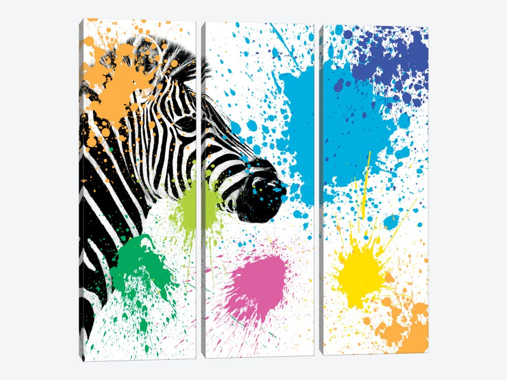 Safari Color Pop Series: Zebra by Philippe Hugonnard 3-piece Canvas Wall Art