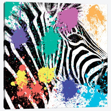 Safari Color Pop Series: Zebra Portrait Canvas Print #PHD246} by Philippe Hugonnard Canvas Art Print