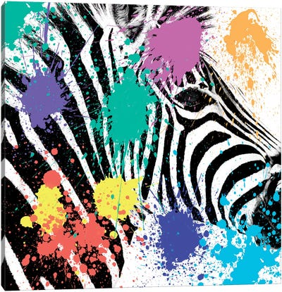 Safari Color Pop Series: Zebra Portrait Canvas Art Print