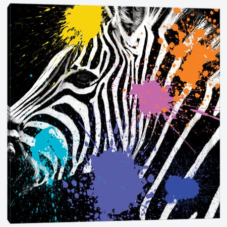 Zebra Portrait II Canvas Print #PHD247} by Philippe Hugonnard Art Print