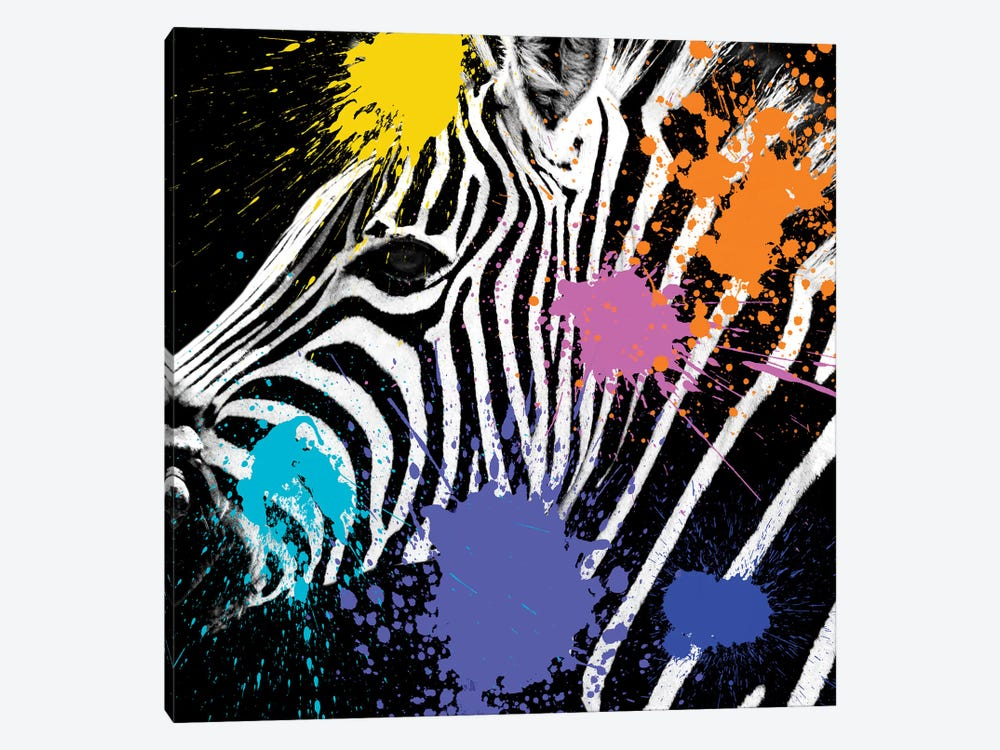 Zebra Portrait II by Philippe Hugonnard 1-piece Canvas Artwork