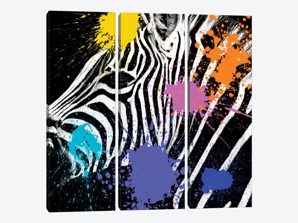 Zebra Portrait II by Philippe Hugonnard 3-piece Canvas Art