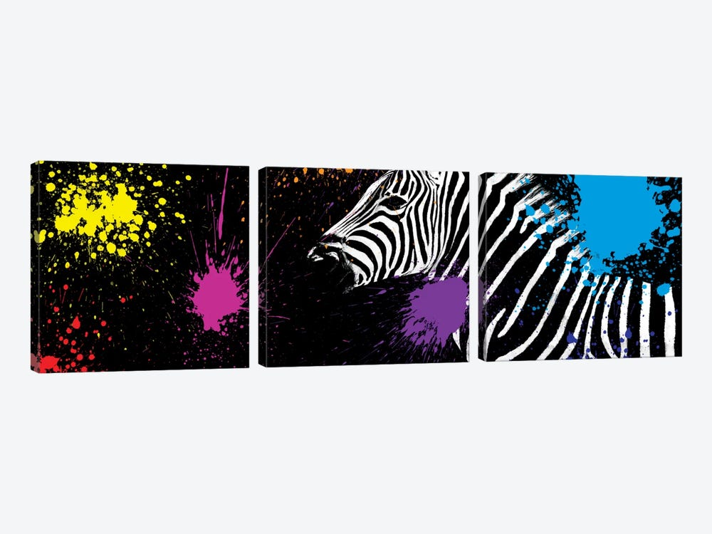 Zebra VI by Philippe Hugonnard 3-piece Canvas Art Print