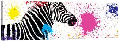 Zebra VII Canvas Art Print