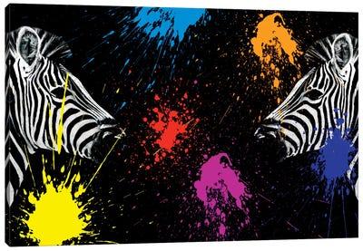 Zebras Face to Face II Canvas Art Print