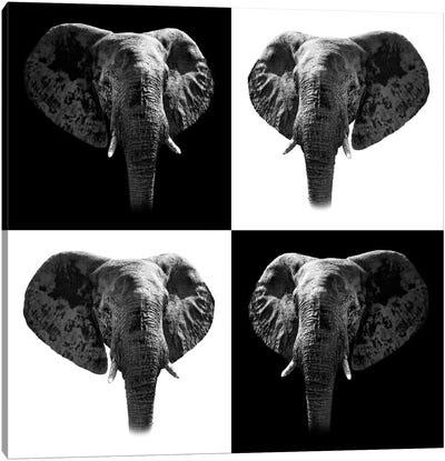 Safari Profile Series: Elephants II Canvas Print #PHD255