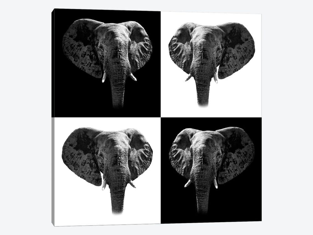 Safari Profile Series: Elephants II by Philippe Hugonnard 1-piece Canvas Print