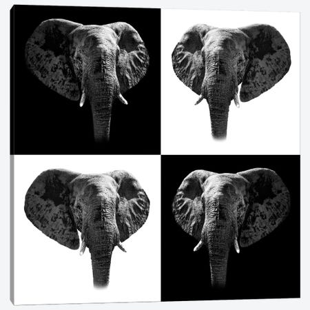 Elephants II Canvas Print #PHD255} by Philippe Hugonnard Canvas Artwork