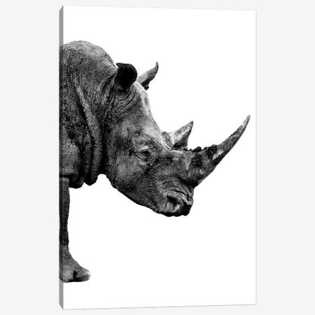 Rhino White Edition IV Canvas Print #PHD257} by Philippe Hugonnard Canvas Art