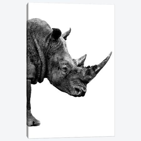 Rhino White Edition IV Canvas Print #PHD257} by Philippe Hugonnard Canvas Art