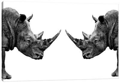 Rhinos Face to Face White Edition Canvas Art Print
