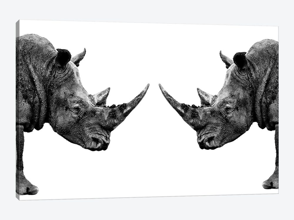 Rhinos Face to Face White Edition by Philippe Hugonnard 1-piece Canvas Artwork