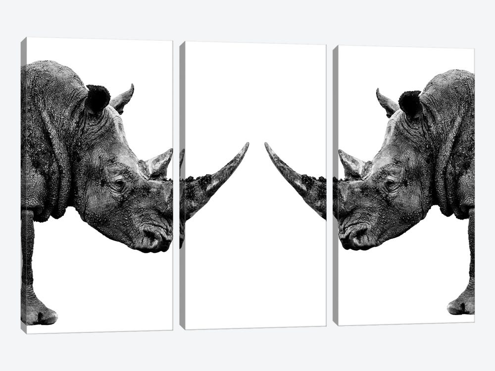 Rhinos Face to Face White Edition by Philippe Hugonnard 3-piece Canvas Wall Art