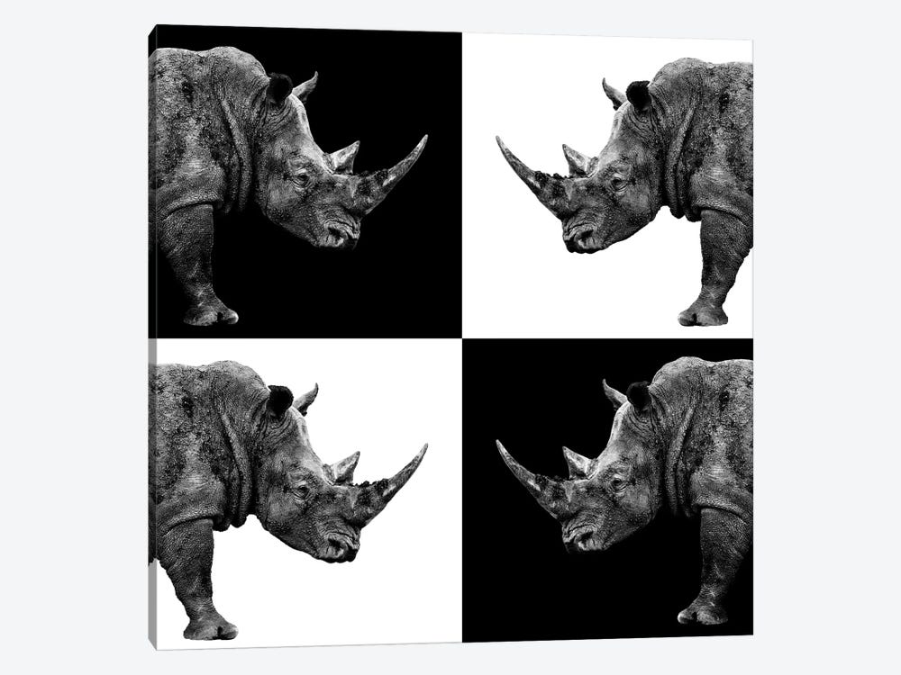 Rhinos II by Philippe Hugonnard 1-piece Canvas Art Print