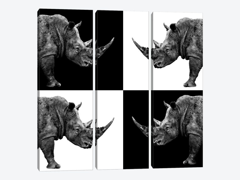 Rhinos II by Philippe Hugonnard 3-piece Canvas Art Print