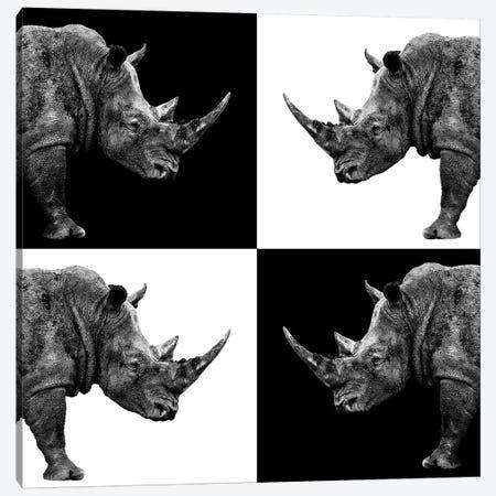 Rhinos II Canvas Print #PHD259} by Philippe Hugonnard Art Print