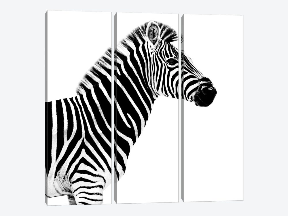 Zebra White Edition II by Philippe Hugonnard 3-piece Canvas Wall Art