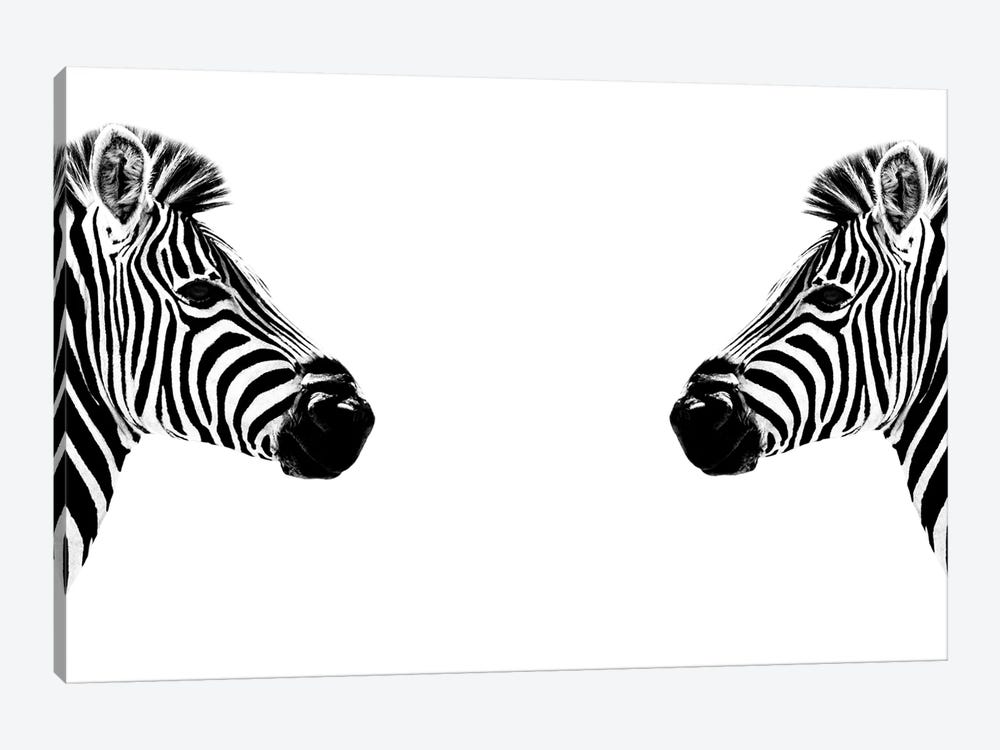 Safari Profile Series: Zebras Face to Face White Edition by Philippe Hugonnard 1-piece Canvas Art Print