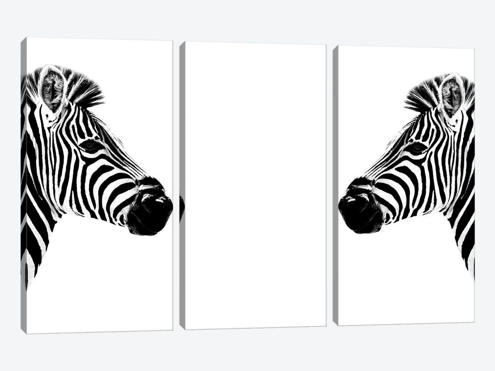 Safari Profile Series: Zebras Face to Face White Edition by Philippe Hugonnard 3-piece Canvas Art Print