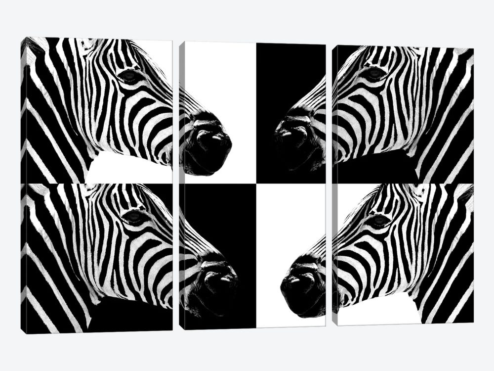 Zebras III by Philippe Hugonnard 3-piece Canvas Art