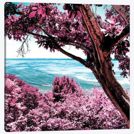 Pink Paradise Canvas Print #PHD289} by Philippe Hugonnard Canvas Art