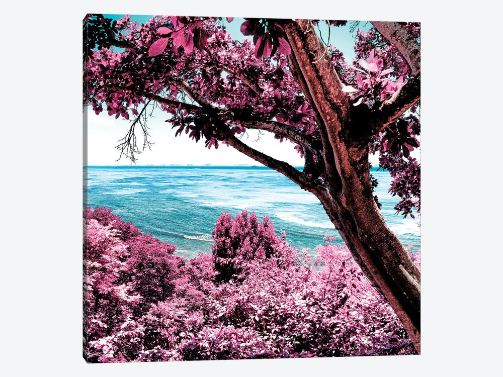 Pink Paradise by Philippe Hugonnard 1-piece Canvas Wall Art