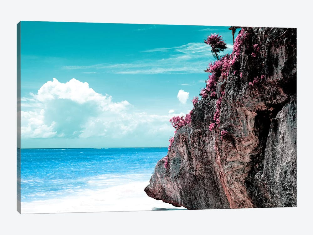 Pink Rock by Philippe Hugonnard 1-piece Canvas Wall Art