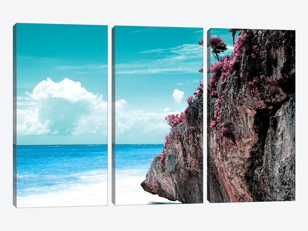 Pink Rock by Philippe Hugonnard 3-piece Canvas Artwork
