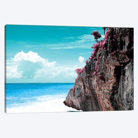 Pink Rock Canvas Print #PHD290} by Philippe Hugonnard Canvas Art Print