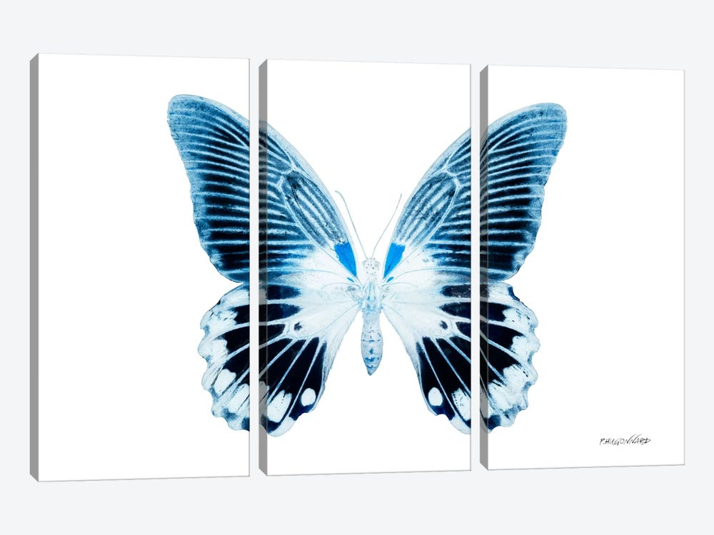 Miss Butterfly Agenor X-Ray (White Edition) by Philippe Hugonnard 3-piece Art Print