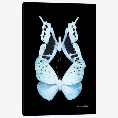 Miss Butterfly Euploanthus Duo X-Ray (Black Edition) Canvas Print #PHD305} by Philippe Hugonnard Canvas Art
