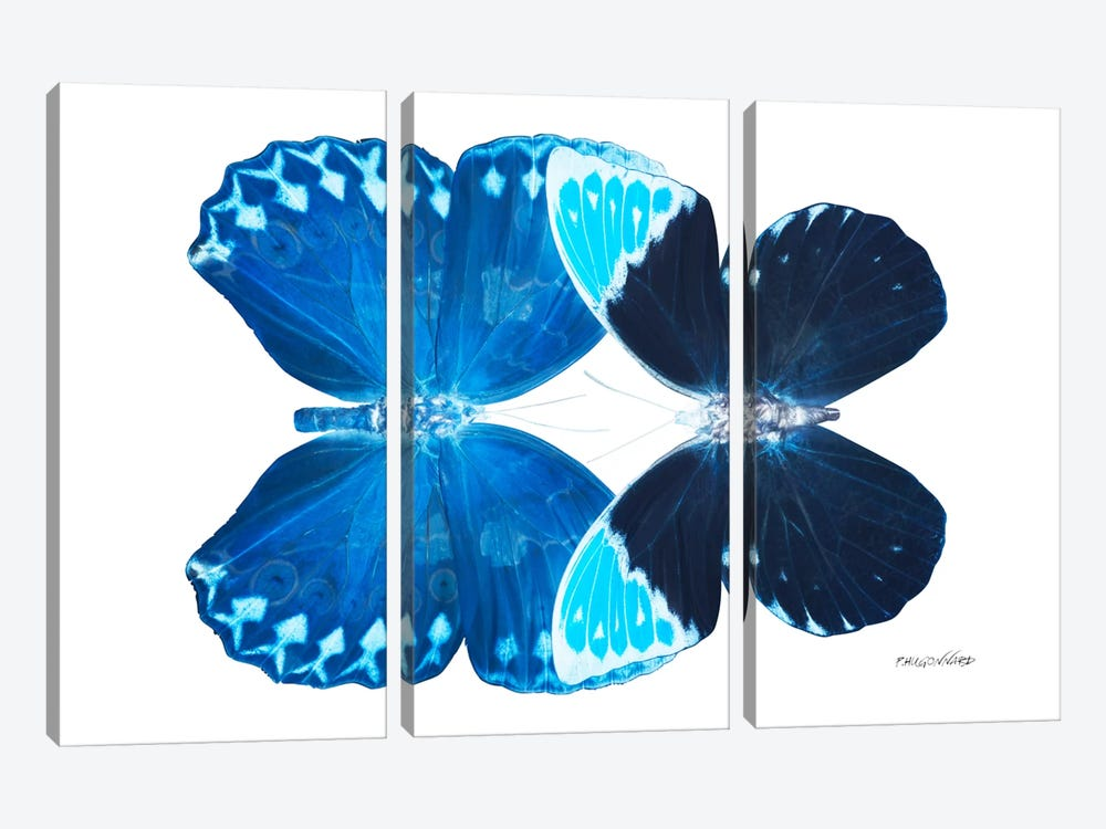 Miss Butterfly Heboformo Duo X-Ray (White Edition) by Philippe Hugonnard 3-piece Canvas Art