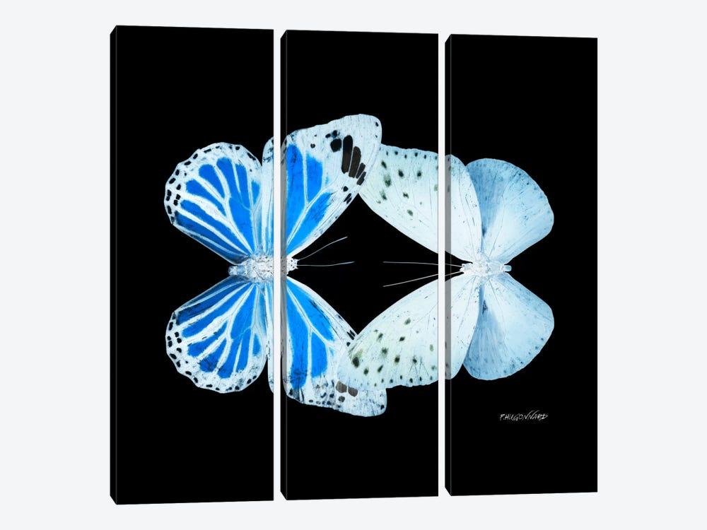 Miss Butterfly Salateuploea Duo X-Ray (Black Edition) by Philippe Hugonnard 3-piece Canvas Art Print