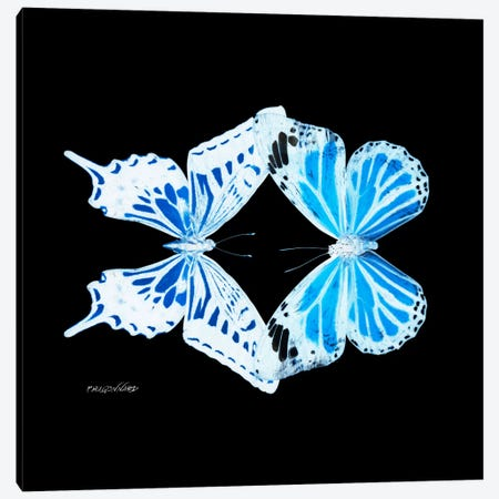 Miss Butterfly Xugenutia Duo X-Ray (Black Edition) Canvas Print #PHD313} by Philippe Hugonnard Canvas Wall Art
