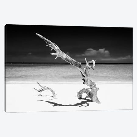White Beach III in B&W Canvas Print #PHD347} by Philippe Hugonnard Canvas Wall Art