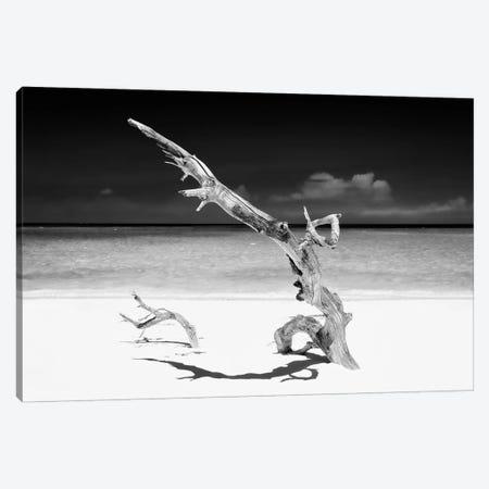 White Beach III in B&W Canvas Print #PHD347} by Philippe Hugonnard Canvas Wall Art
