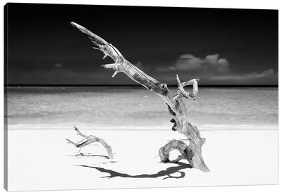 White Beach III in B&W Canvas Art Print