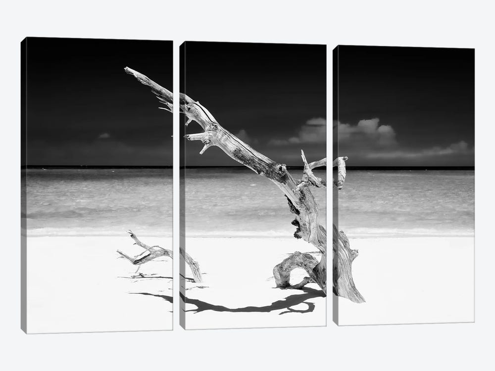 White Beach III in B&W by Philippe Hugonnard 3-piece Canvas Art Print
