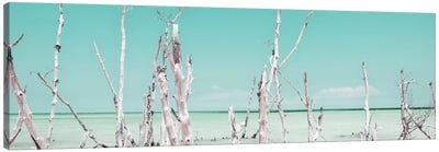 Ocean Wild Nature - Pastel Coral Green Canvas Art Print