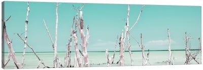 Ocean Wild Nature - Pastel Coral Green Canvas Art Print