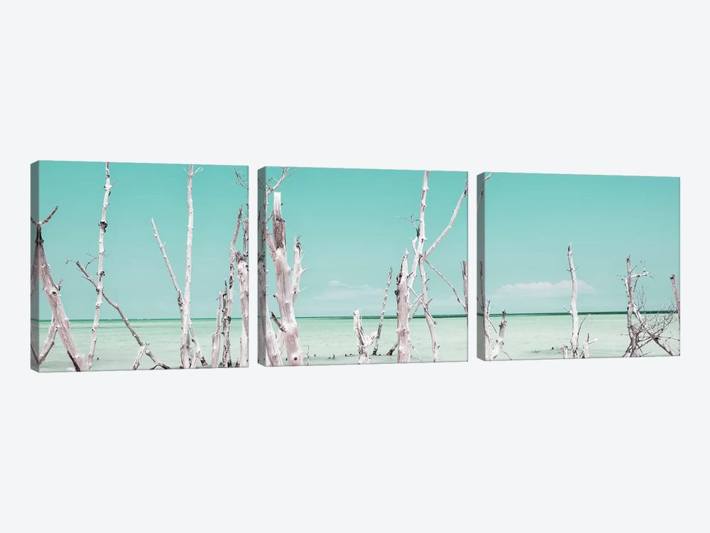 Ocean Wild Nature - Pastel Coral Green by Philippe Hugonnard 3-piece Art Print