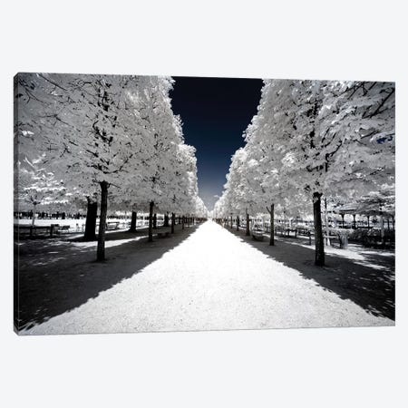 Another Look - White Alley Canvas Print #PHD493} by Philippe Hugonnard Canvas Art Print