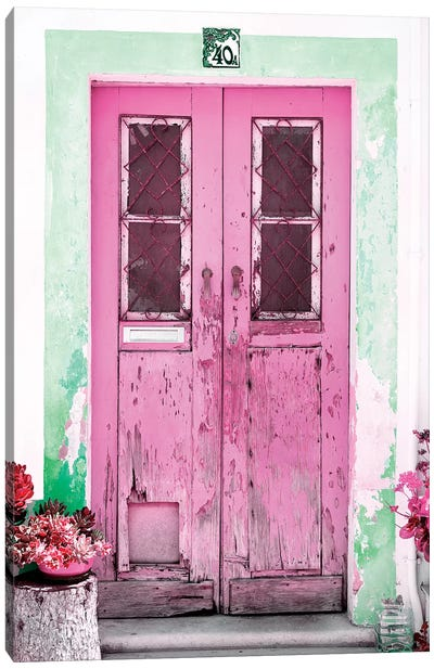 Old Pink Door Canvas Art Print
