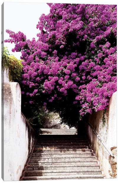 Flowery Staircase Canvas Art Print