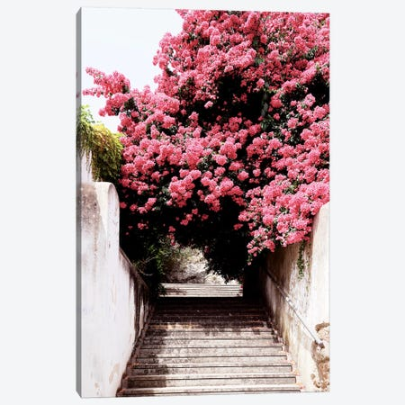 Flowery Staircase II Canvas Print #PHD622} by Philippe Hugonnard Canvas Artwork