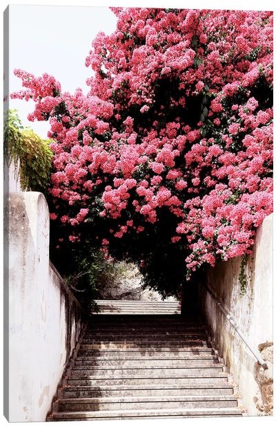 Flowery Staircase II Canvas Art Print