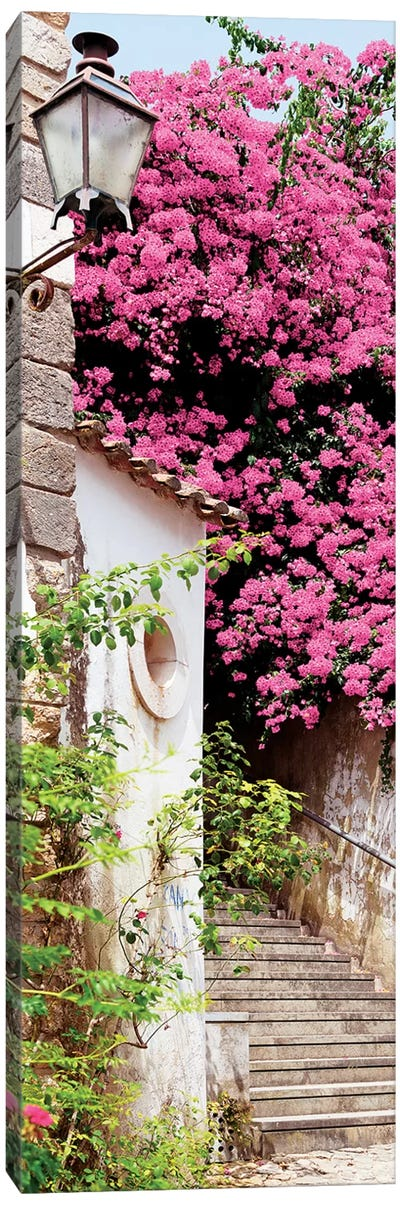 Pink Tree Canvas Art Print