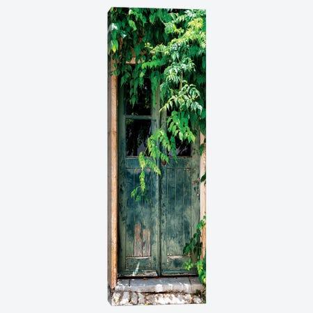 Wild Door 3-Piece Canvas #PHD644} by Philippe Hugonnard Canvas Print