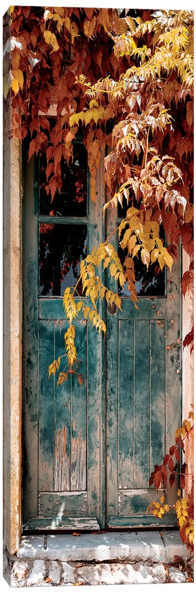 Old Door with Fall Colors Canvas Art Print