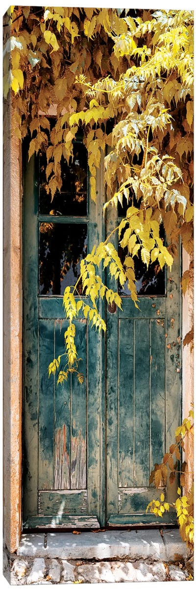 Old Door with Fall Colors II Canvas Art Print